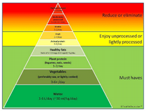 Pyramid of Integrated Nutrition (borrowed by CanFitPro)
